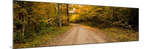 Dirt Road Passing Through a Forest, New Hampshire, USA--Mounted Photographic Print