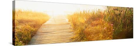 Grass on the Both Sides of a Pier, Laurel Pond, Pokagon State Park, Indiana, USA--Stretched Canvas Print