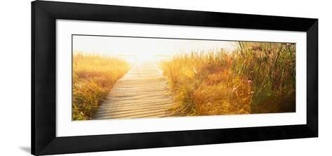 Grass on the Both Sides of a Pier, Laurel Pond, Pokagon State Park, Indiana, USA--Framed Art Print