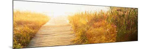 Grass on the Both Sides of a Pier, Laurel Pond, Pokagon State Park, Indiana, USA--Mounted Photographic Print
