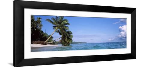 Palm Trees on the Beach, Indonesia--Framed Art Print