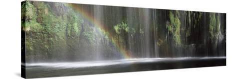 Rainbow Formed in Front of Waterfall in a Forest, Near Dunsmuir, California, USA--Stretched Canvas Print