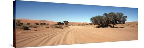 Tire Tracks in an Arid Landscape, Sossusvlei, Namib Desert, Namibia--Stretched Canvas Print