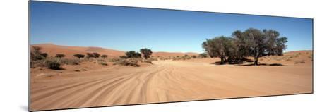 Tire Tracks in an Arid Landscape, Sossusvlei, Namib Desert, Namibia--Mounted Photographic Print