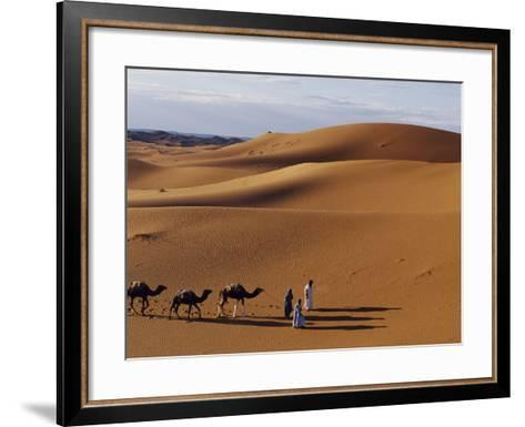 Berber Tribesmen Lead their Camels Through the Sand Dunes of the Erg Chegaga, in the Sahara Region -Mark Hannaford-Framed Art Print