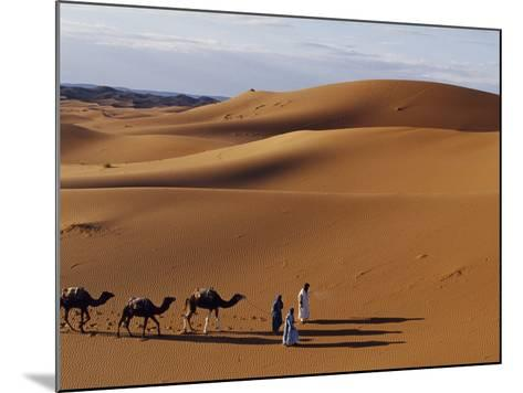 Berber Tribesmen Lead their Camels Through the Sand Dunes of the Erg Chegaga, in the Sahara Region -Mark Hannaford-Mounted Photographic Print