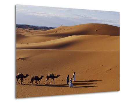 Berber Tribesmen Lead their Camels Through the Sand Dunes of the Erg Chegaga, in the Sahara Region -Mark Hannaford-Metal Print