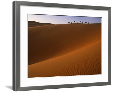 Tenere Desert, Camel Caravan Travelling Through the Air Mountains and Tenere Desert, Niger-Paul Harris-Framed Art Print