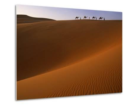 Tenere Desert, Camel Caravan Travelling Through the Air Mountains and Tenere Desert, Niger-Paul Harris-Metal Print