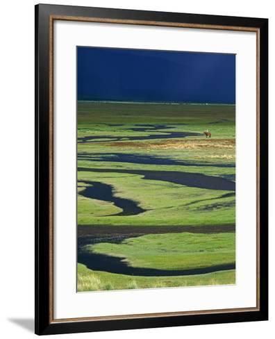 Steppeland, A Lone Horse Herder Out on the Steppeland, Mongolia-Paul Harris-Framed Art Print