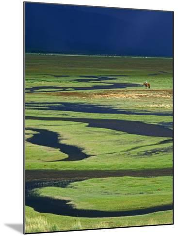 Steppeland, A Lone Horse Herder Out on the Steppeland, Mongolia-Paul Harris-Mounted Photographic Print