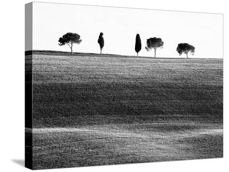 Classic Tuscan Landscape, Near San Quirico, Valle De Orcia, Tuscany, Italy-Nadia Isakova-Stretched Canvas Print