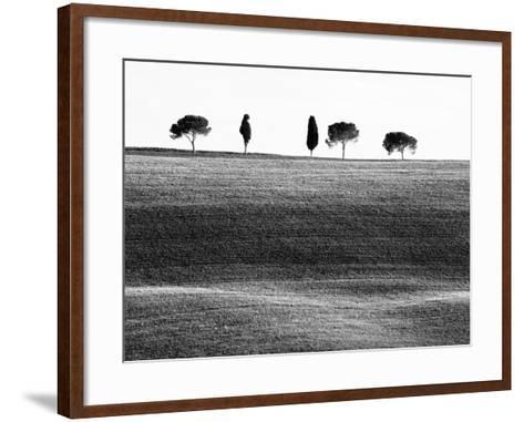 Classic Tuscan Landscape, Near San Quirico, Valle De Orcia, Tuscany, Italy-Nadia Isakova-Framed Art Print