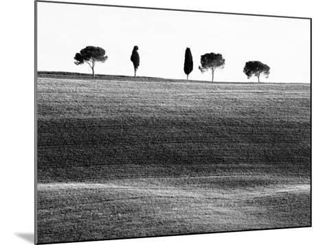 Classic Tuscan Landscape, Near San Quirico, Valle De Orcia, Tuscany, Italy-Nadia Isakova-Mounted Photographic Print