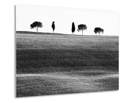 Classic Tuscan Landscape, Near San Quirico, Valle De Orcia, Tuscany, Italy-Nadia Isakova-Metal Print