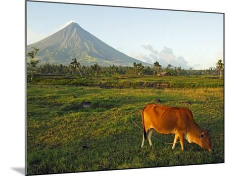 Luzon Island, Bicol Province, Mount Mayon Volcano, Philippines-Christian Kober-Mounted Photographic Print