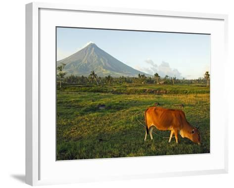 Luzon Island, Bicol Province, Mount Mayon Volcano, Philippines-Christian Kober-Framed Art Print
