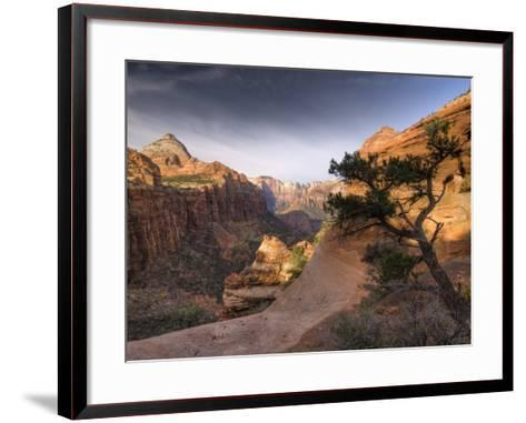 Utah, Zion National Park, from Canyon Overlook, USA-Alan Copson-Framed Art Print