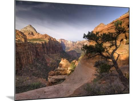 Utah, Zion National Park, from Canyon Overlook, USA-Alan Copson-Mounted Photographic Print