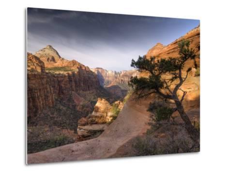 Utah, Zion National Park, from Canyon Overlook, USA-Alan Copson-Metal Print