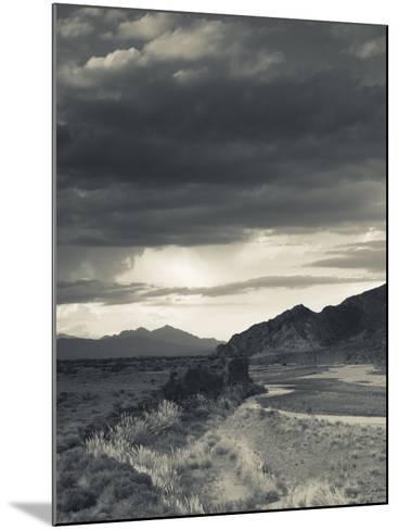 Mendoza Province, Uspallata, Mountain Light in Rio Mendoza River Valley, Argentina-Walter Bibikow-Mounted Photographic Print