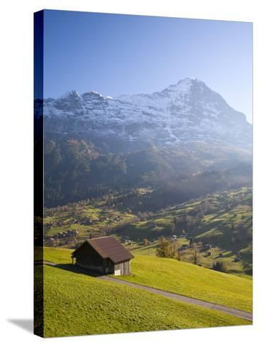 Alpine Meadow, Eiger and Grindelwald, Berner Oberland, Switzerland-Doug Pearson-Stretched Canvas Print