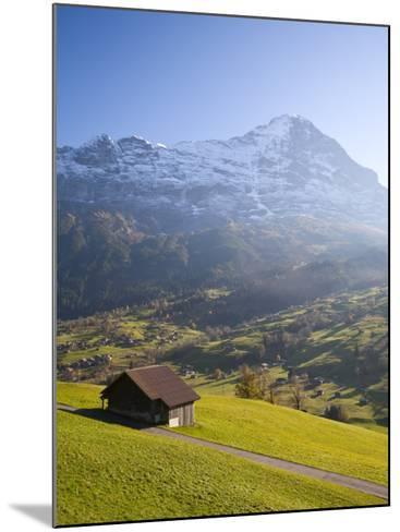 Alpine Meadow, Eiger and Grindelwald, Berner Oberland, Switzerland-Doug Pearson-Mounted Photographic Print
