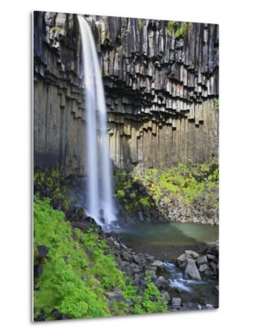 Svartifoss Waterfall, Skaftafell Park, Iceland-Michele Falzone-Metal Print