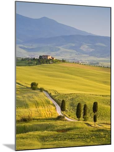Farmhouse, Val D' Orcia, Tuscany, Italy-Doug Pearson-Mounted Photographic Print