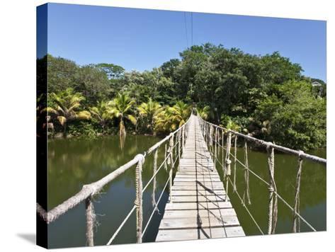 Bay Islands, Roatan, Gumba Limba Park, Honduras-Jane Sweeney-Stretched Canvas Print