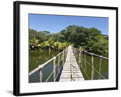 Bay Islands, Roatan, Gumba Limba Park, Honduras-Jane Sweeney-Framed Art Print