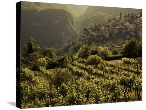 Lombardy, Lake District, Lake Garda, Tremosine Plateau, Sermerio, Vineyards, Italy-Walter Bibikow-Stretched Canvas Print