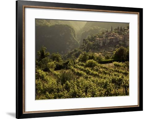 Lombardy, Lake District, Lake Garda, Tremosine Plateau, Sermerio, Vineyards, Italy-Walter Bibikow-Framed Art Print