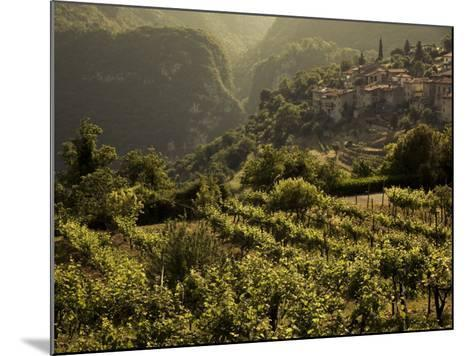 Lombardy, Lake District, Lake Garda, Tremosine Plateau, Sermerio, Vineyards, Italy-Walter Bibikow-Mounted Photographic Print