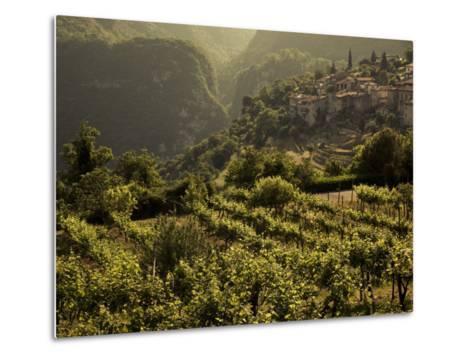 Lombardy, Lake District, Lake Garda, Tremosine Plateau, Sermerio, Vineyards, Italy-Walter Bibikow-Metal Print