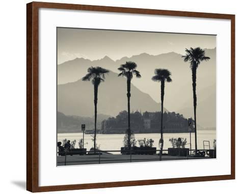Piedmont, Lake Maggiore, Borromean Islands, Stresa, Lakefront Palms with Isola Bella, Italy-Walter Bibikow-Framed Art Print
