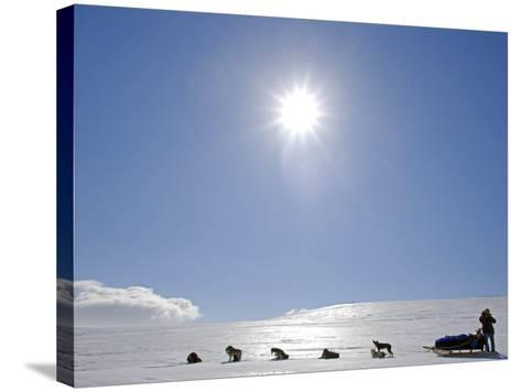 Troms, Lyngen Alps, Travel over the Mountains of the Lyngen Alps Via Dog Sled, Norway-Mark Hannaford-Stretched Canvas Print