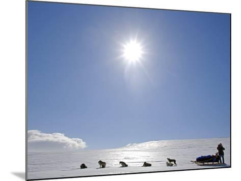 Troms, Lyngen Alps, Travel over the Mountains of the Lyngen Alps Via Dog Sled, Norway-Mark Hannaford-Mounted Photographic Print