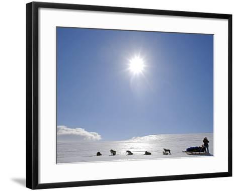 Troms, Lyngen Alps, Travel over the Mountains of the Lyngen Alps Via Dog Sled, Norway-Mark Hannaford-Framed Art Print