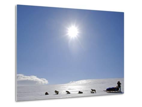 Troms, Lyngen Alps, Travel over the Mountains of the Lyngen Alps Via Dog Sled, Norway-Mark Hannaford-Metal Print