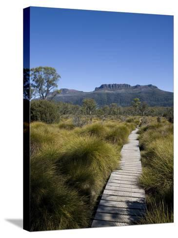 Final Stretch of Overland Track to Narcissus Hut, Mount Olympus on Shores of Lake St Clair in Back-Julian Love-Stretched Canvas Print