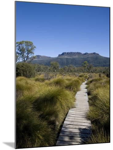 Final Stretch of Overland Track to Narcissus Hut, Mount Olympus on Shores of Lake St Clair in Back-Julian Love-Mounted Photographic Print