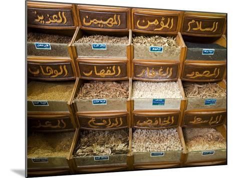 Spices for Sale in the Souq-Al-Atterine Near Khan El-Khalili, Cairo, Egypt-Julian Love-Mounted Photographic Print