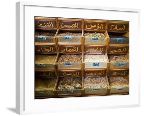 Spices for Sale in the Souq-Al-Atterine Near Khan El-Khalili, Cairo, Egypt-Julian Love-Framed Art Print