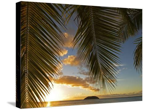 South Pacific, Fiji, Kadavu, Sunset Through Plams from the Beach on Dravuni Island-Paul Harris-Stretched Canvas Print