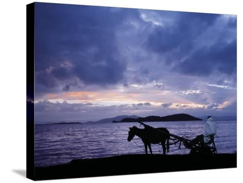 Dawn at Lake Ziway, Central Ethiopia, with the Silhouette of a Horse-Drawn Buggy-Nigel Pavitt-Stretched Canvas Print