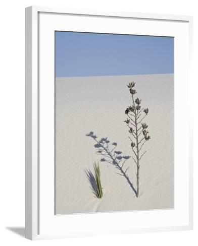 Yucca on Dune, White Sands National Monument, New Mexico, United States of America, North America-James Hager-Framed Art Print
