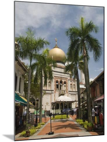 The Sultan Mosque, Little India, Singapore, Southeast Asia, Asia-Richard Maschmeyer-Mounted Photographic Print