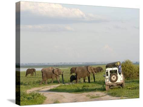 Group of Elephants and Landrover, Chobe National Park, Botswana, Africa-Peter Groenendijk-Stretched Canvas Print