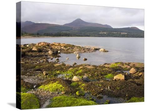 View across Brodick Bay to Goatfell, Brodick, Isle of Arran, North Ayrshire-Ruth Tomlinson-Stretched Canvas Print